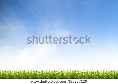 Fresh spring green grass under beautiful blue sky ,clouds and sunlight - use for background in natural summer concept - stock photo
