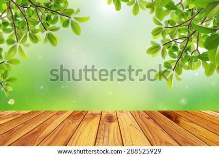 Fresh spring green leaf with green bokeh and sunlight and wood floor. Beauty natural background - stock photo
