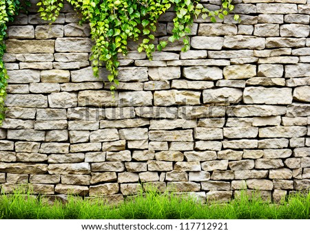 Fresh spring green leaves plant over brick wall background - stock photo