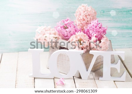 Fresh spring hyacinths flowers in box and word love in ray of light  on white wooden background against turquoise wall. Selective focus is on  wooden word. - stock photo