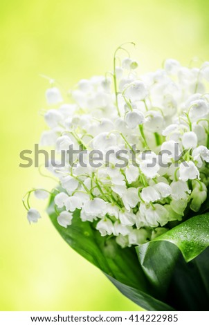 Fresh spring lilies of the valley on a green blurry background, selective focus - stock photo