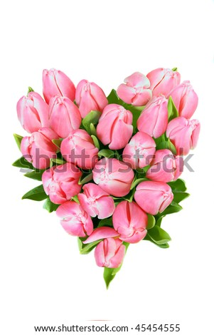 fresh spring tulips in a shape of heart isolated on white background - stock photo