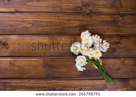 Fresh  spring yellow  daffodils  on brown painted wooden planks. Selective focus. Place for text