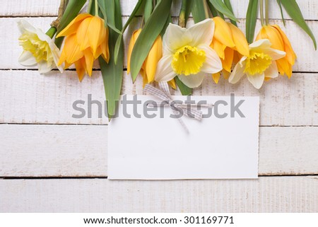 Fresh  spring yellow narcissus and  tulips flowers as a border and empty tag on white  painted wooden planks. Selective focus. Place for text.  - stock photo