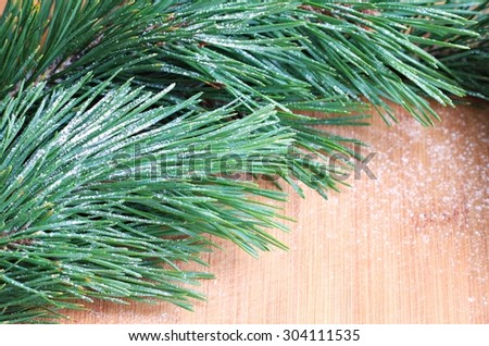 fresh spruce pine twigs traditional winter decoration snow-covered wood background empty space soft focus - stock photo