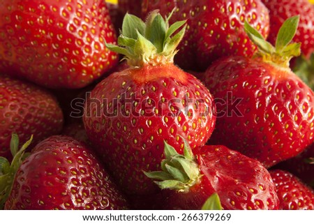 Fresh strawberries fruits - stock photo