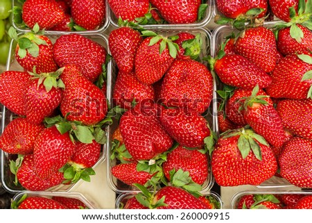 Fresh strawberries in baskets ready for sale. - stock photo