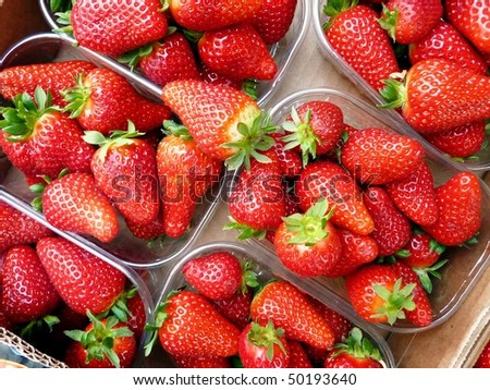 Fresh strawberries in boxes