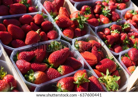 Fresh Strawberries in the plastic box on shelf for sell in market