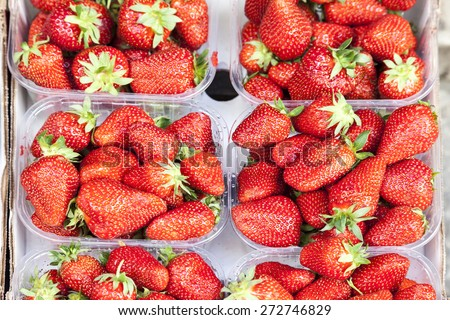 Fresh strawberries on a market in Italy, Europe - stock photo