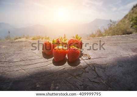 Fresh strawberries on wooden table with sunlight in the morning - stock photo