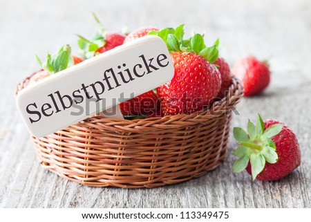 fresh strawberries with german tag Selbstpfluecke