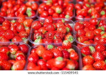 fresh  strawberry is packaged in plastic trays - stock photo