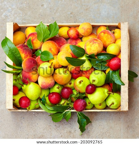 fresh summer fruit in crate - stock photo