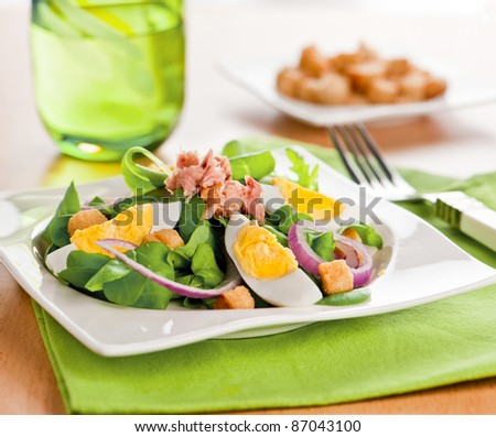 Fresh summer light salad with eggs and greens - stock photo