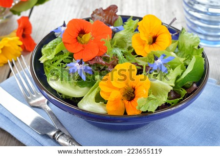 Fresh summer salad with edible flowers nasturtium, borage flowers in a bowl. - stock photo