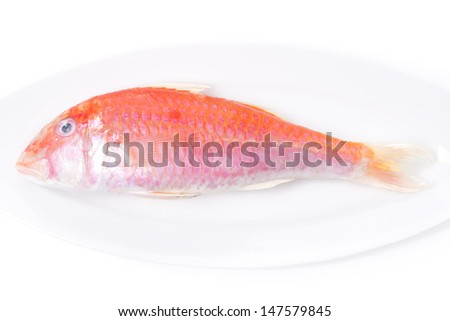 Fresh surmullet on a plate close-up on white background, top view, horizontal - stock photo