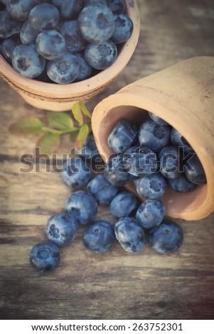 Fresh sweet tasty Blueberries in the garden - stock photo