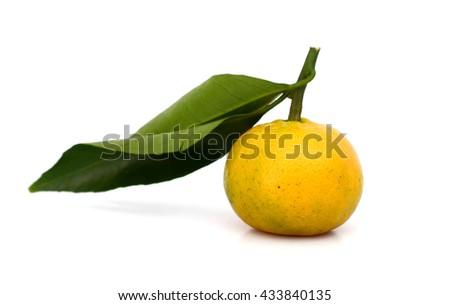 fresh tangerine on white background  - stock photo