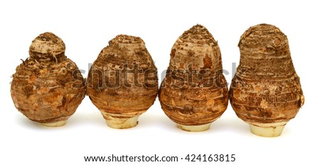 Fresh taro roots isolated on a white background
