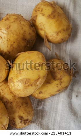fresh tasty new potatoes. Selective focus  - stock photo