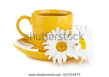 fresh tea camomile flowers - stock photo