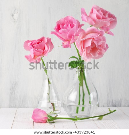 Fresh tender pink garden roses in glass vases on rustic white wooden background.