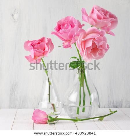 Fresh tender pink garden roses in glass vases on rustic white wooden background.  - stock photo