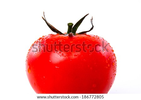 Fresh three of Red Tomato isolated on white background.