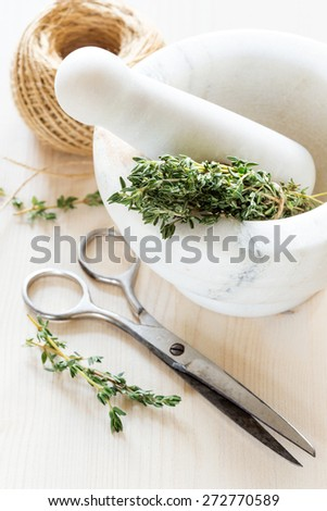 Fresh thyme in a marble mortar and scissors - stock photo
