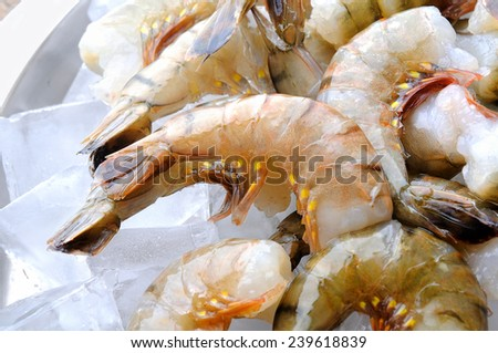 Fresh tiger shrimps with ice - stock photo