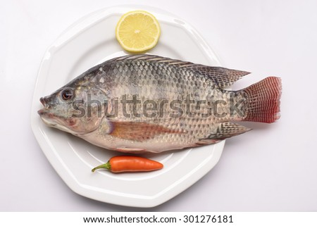 Fresh Tilapia with chilly and lemon on white plate