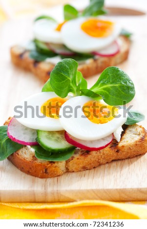Fresh toast sandwiches with egg,radish,cucumber and soft cheese - stock photo