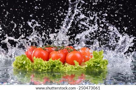 Fresh tomato cherry and green fresh salad with water drop splash on dark background - stock photo
