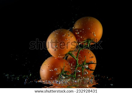 fresh tomato with drops of water - stock photo