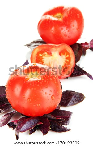 Fresh tomatoes and basil leaves isolated on white