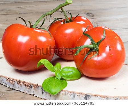 Fresh tomatoes and basil on wood. - stock photo
