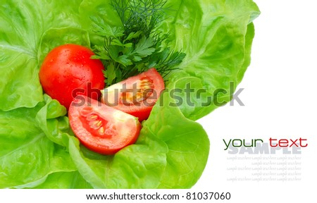 Fresh tomatoes and greenery on green salad isolated on white background