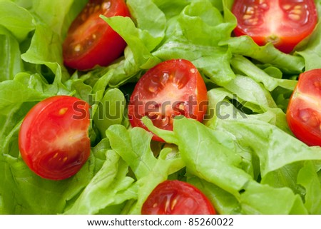fresh tomatoes and lettuce - stock photo