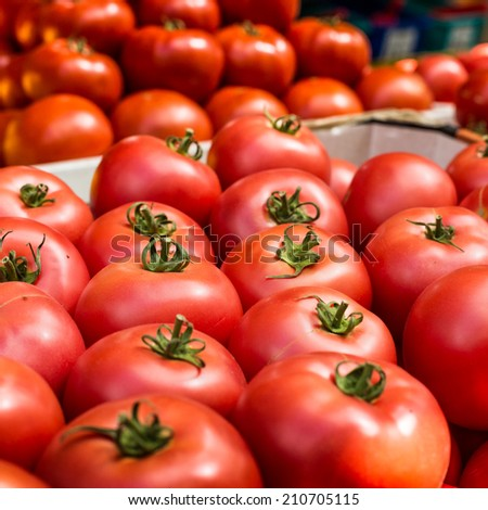 Fresh tomatoes in a market stall in Poland. - stock photo