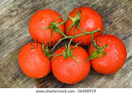 Fresh tomatoes in drops of water on a wooden board - stock photo