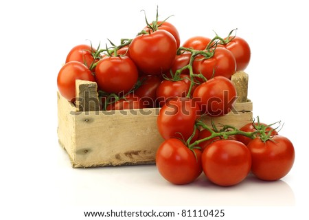 fresh tomatoes on the vine in a wooden crate on a white background - stock photo