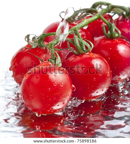 fresh tomatoes with pouring water isolated on white background - stock photo