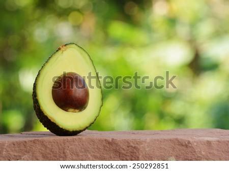 Fresh tropical avocado fruit - stock photo