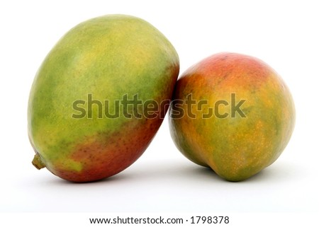 Fresh tropical green mango fruit, macro closeup, isolated on white, close-up with copyspace - stock photo