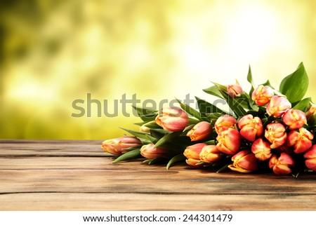 fresh tulips and desk of wood  - stock photo