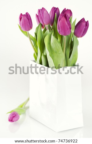 fresh tulips in a shopping bag - stock photo