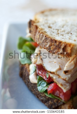 Fresh turkey and vegetable sandwich on rustic whole grain bread - stock photo