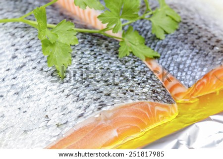 Fresh two steak of salmon preparation for baking - stock photo