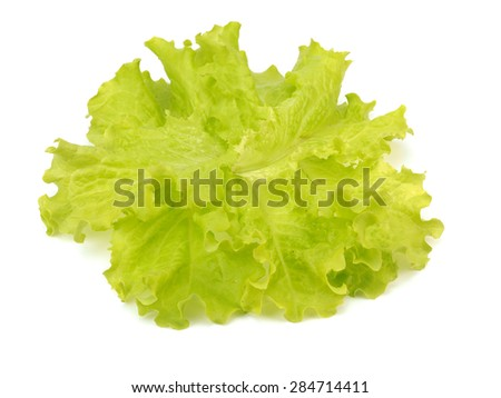 Fresh unwashed organic lettuce leaves on a white background